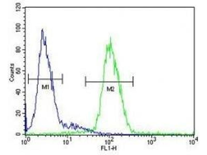 Flow Cytometry (FACS) image for anti-Ceruloplasmin (Ferroxidase) (CP) (AA 121-151) antibody (ABIN3030467)