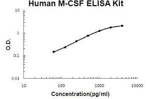 ELISA image for CSF1 ELISA Kit (Colony Stimulating Factor 1 (Macrophage)) (ABIN411321)