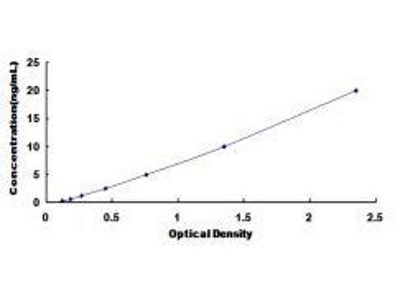 Glutamate Receptor, Ionotropic, N-Methyl D-Aspartate 2D (GRIN2D) ELISA Kit