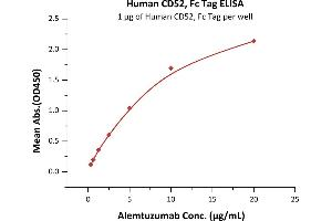 Image no. 2 for CD52 (CD52) (AA 25-36) (Active) protein (Fc Tag) (ABIN6253630)