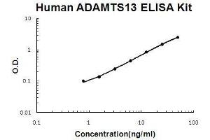 Image no. 1 for ADAM Metallopeptidase with Thrombospondin Type 1 Motif, 13 (ADAMTS13) ELISA Kit (ABIN2859307)