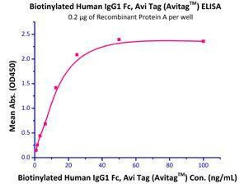 Binding Studies (Bind) image for HEK-293 Cells IgG isotype control (AVI tag,Biotin,His tag) (ABIN2870554)