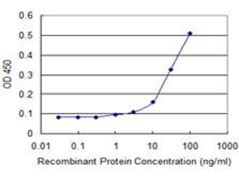 ELISA image for anti-RHOC antibody (Ras Homolog Gene Family, Member C) (AA 1-193) (ABIN513475)