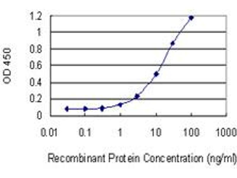 ELISA image for anti-Serotonin Receptor 1E (HTR1E) (AA 206-276), (partial) antibody (ABIN516751)