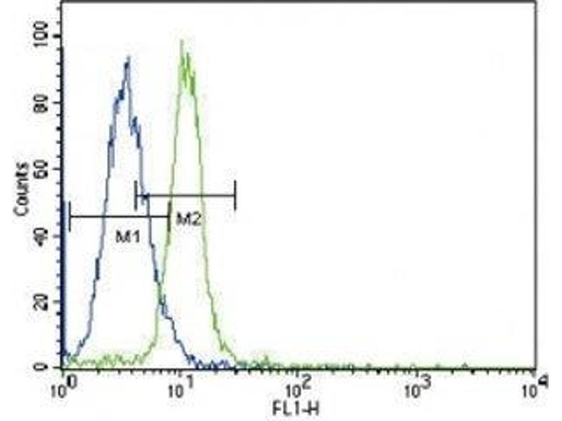 Flow Cytometry (FACS) image for anti-Janus Kinase 2 (JAK2) (AA 1101-1132) antibody (ABIN3031513)