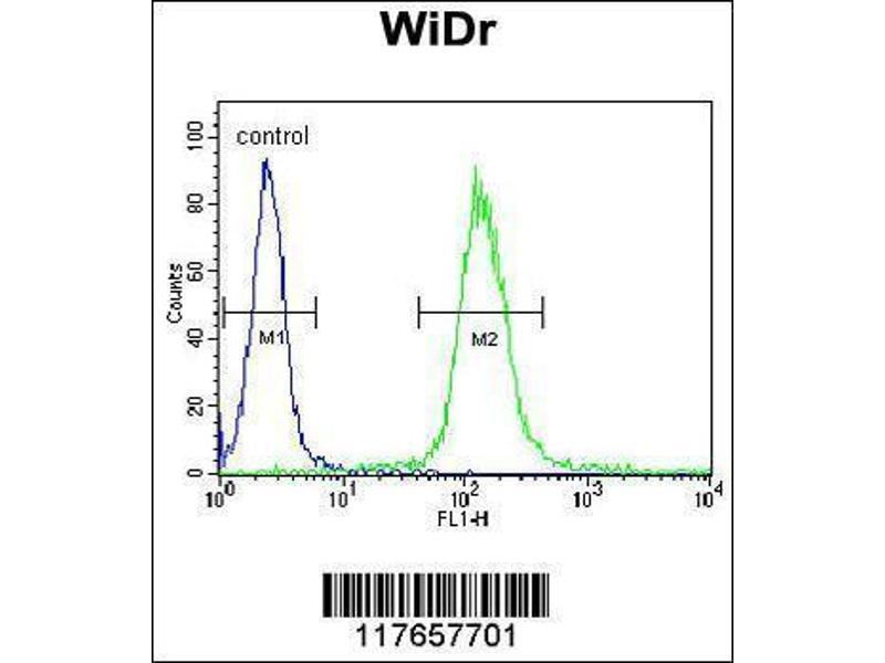 Flow Cytometry (FACS) image for anti-Heat Shock 60kDa Protein 1 (Chaperonin) (HSPD1) (AA 396-423), (C-Term) antibody (ABIN1882094)