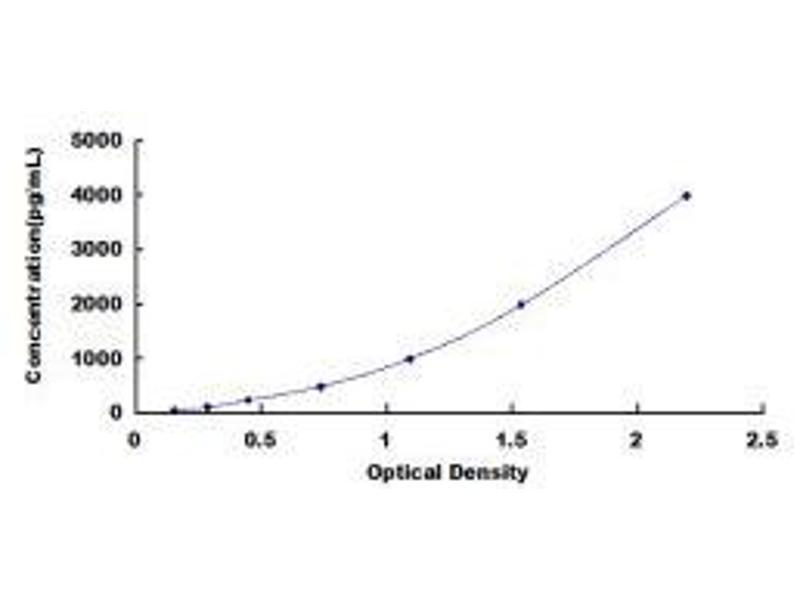 Matrix Metallopeptidase 7 (Matrilysin, Uterine) (MMP7) ELISA Kit