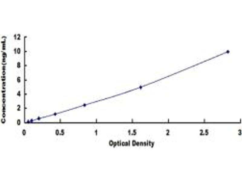 Folate Receptor 2 (Fetal) (FOLR2) ELISA Kit