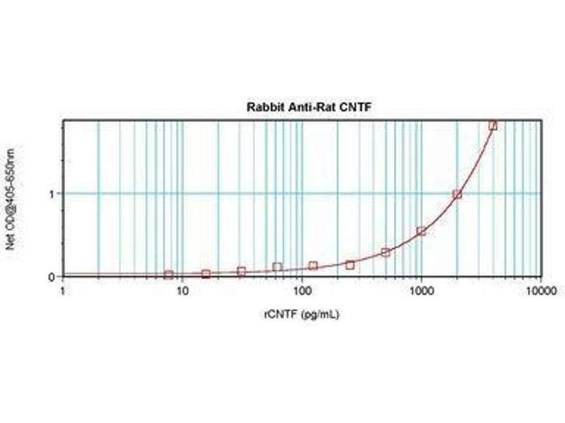 image for anti-CNTF antibody (Ciliary Neurotrophic Factor) (ABIN465749)