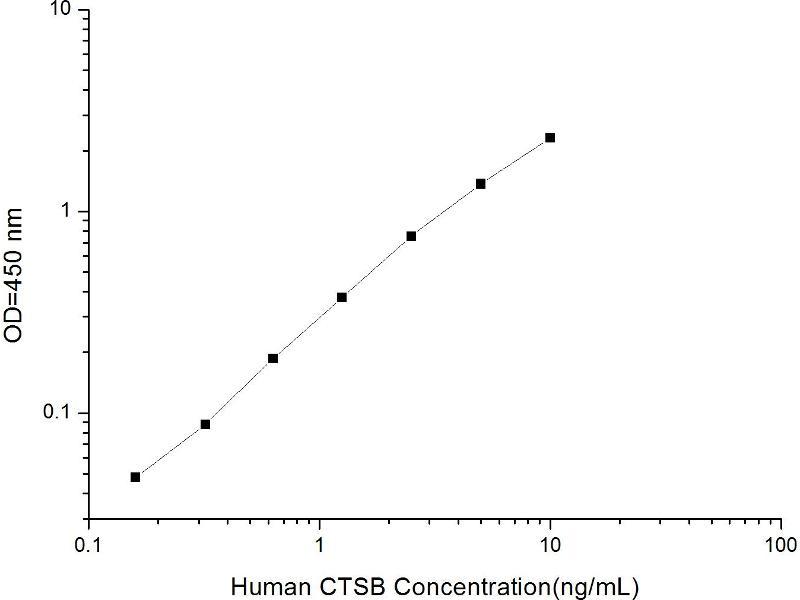 Cathepsin B (CTSB) ELISA Kit (2)