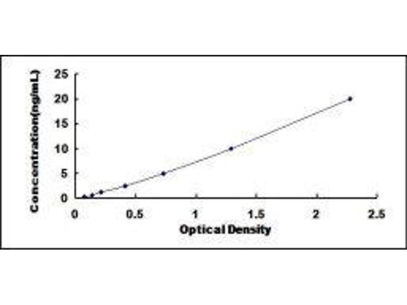 Calcium Channel, Voltage-Dependent, L Type, alpha 1D Subunit (CACNA1D) ELISA Kit