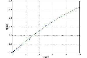 Image no. 1 for Solute Carrier Family 25 (Carnitine/acylcarnitine Translocase), Member 20 (SLC25A20) ELISA Kit (ABIN5522045)