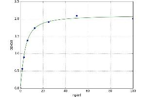 Image no. 1 for Growth Differentiation Factor 6 (GDF6) ELISA Kit (ABIN5520660)