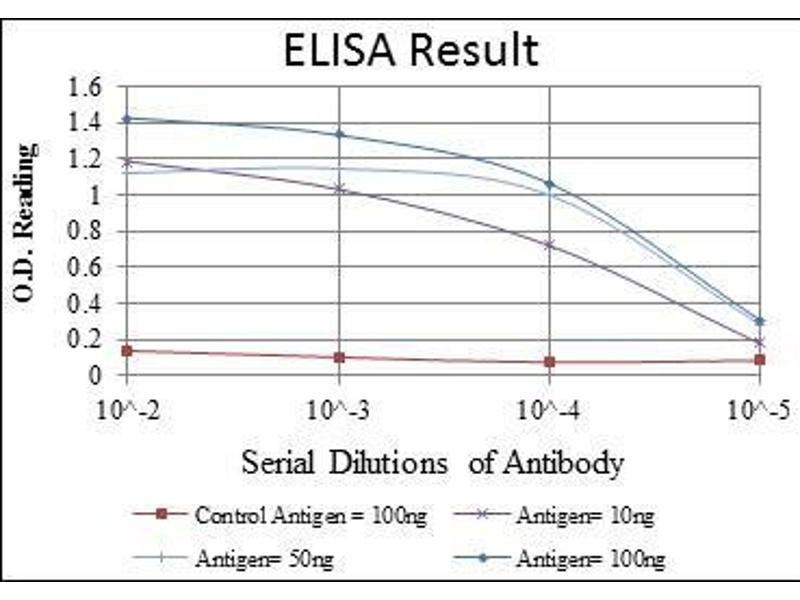 ELISA image for anti-MAP3K2 antibody (Mitogen-Activated Protein Kinase Kinase Kinase 2) (ABIN969272)