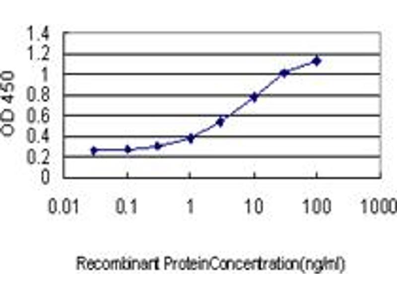 ELISA image for anti-RAD23 Homolog A (S. Cerevisiae) (RAD23A) (AA 151-250) antibody (ABIN393680)