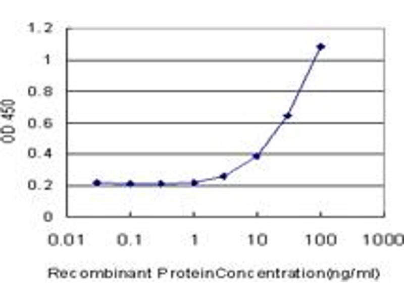 ELISA image for anti-CAMK2A antibody (Calcium/calmodulin-Dependent Protein Kinase II alpha) (AA 305-410) (ABIN513973)