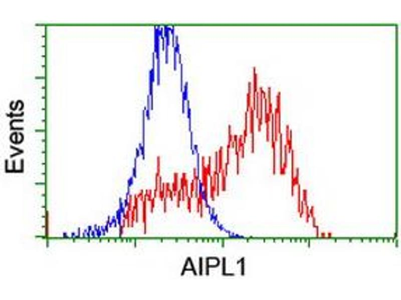 Flow Cytometry (FACS) image for anti-Aryl Hydrocarbon Receptor Interacting Protein-Like 1 (AIPL1) antibody (ABIN2455133)