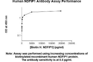 Image no. 2 for anti-Nedd4 Family Interacting Protein 1 (NDFIP1) (AA 1-116) antibody (ABIN5565940)