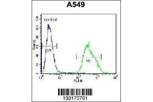 Flow Cytometry (FACS) image for anti-PALM3 antibody (Paralemmin 3) (AA 546-574) (ABIN655704)