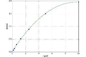 Image no. 1 for Insulin-Like Growth Factor 2 (IGF2) ELISA Kit (ABIN5523412)
