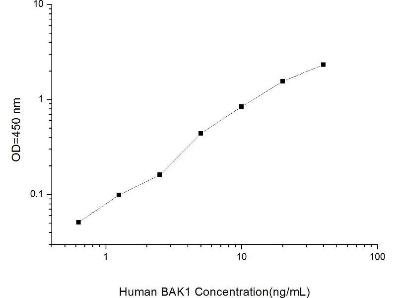 BCL2-Antagonist/killer 1 (BAK1) ELISA Kit (2)