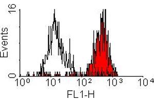 Flow Cytometry (FACS) image for anti-CD11b antibody (Integrin alpha M)  (FITC) (ABIN2487451)
