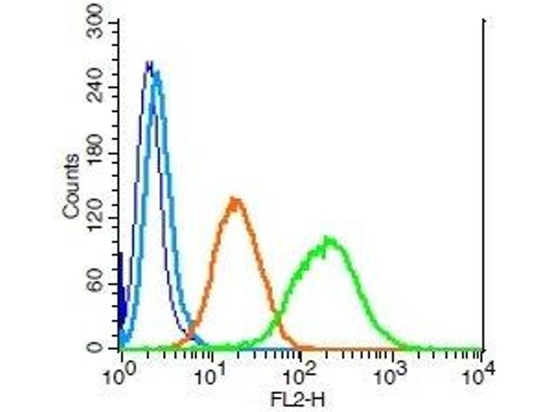 Flow Cytometry (FACS) image for anti-Leukemia Inhibitory Factor Receptor alpha (LIFR) (AA 500-550) antibody (ABIN686827)