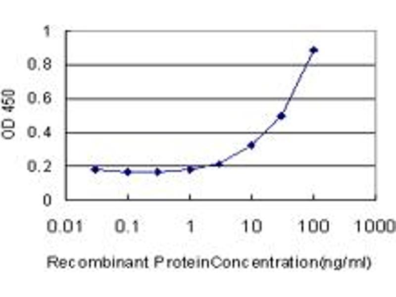 ELISA image for anti-CAMK2A antibody (Calcium/calmodulin-Dependent Protein Kinase II alpha) (AA 305-410) (ABIN513970)