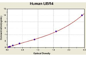Image no. 1 for Ubiquitin Protein Ligase E3 Component N-Recognin 4 (UBR4) ELISA Kit (ABIN1117709)