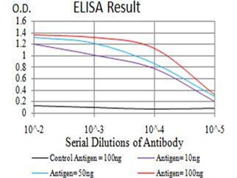 ELISA image for anti-Met Proto-Oncogene (MET) (AA 743-932) antibody (ABIN5542707)