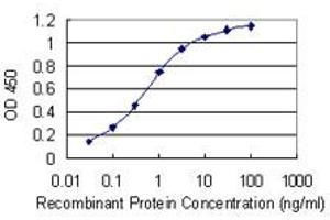 Image no. 1 for anti-Poly(rC) Binding Protein 1 (PCBP1) (AA 181-280) antibody (ABIN518653)