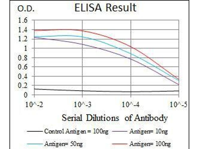 ELISA image for anti-HSF4 antibody (Heat Shock Transcription Factor 4) (ABIN969527)