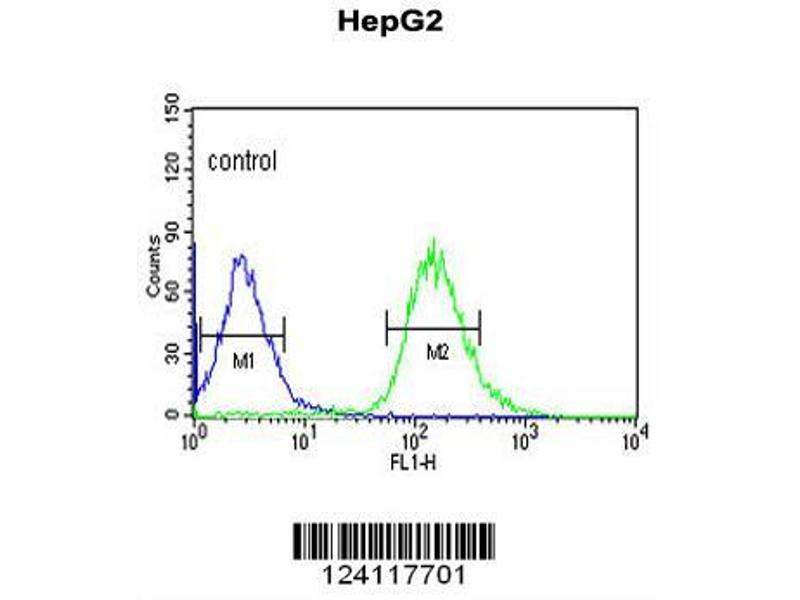 Flow Cytometry (FACS) image for anti-WAC antibody (WW Domain Containing Adaptor with Coiled-Coil) (AA 284-313) (ABIN653490)