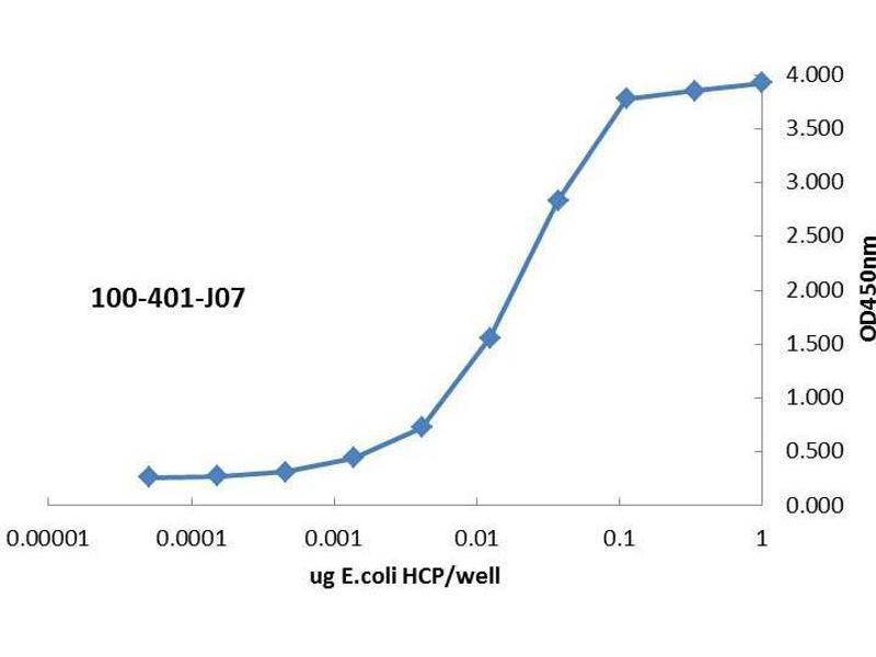 Image no. 3 for anti-Host Cell Proteins (HCP) antibody (ABIN1607604)