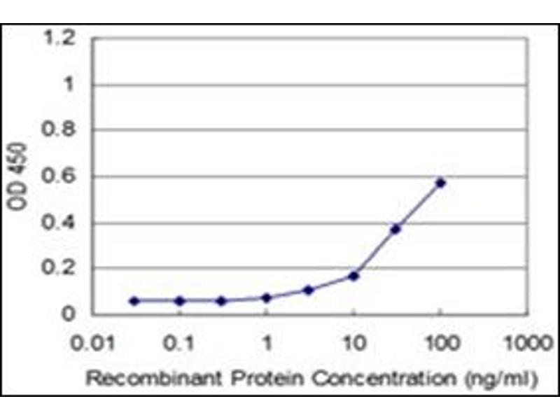 ELISA image for anti-RHOA antibody (Ras Homolog Gene Family, Member A) (AA 1-194) (ABIN782332)