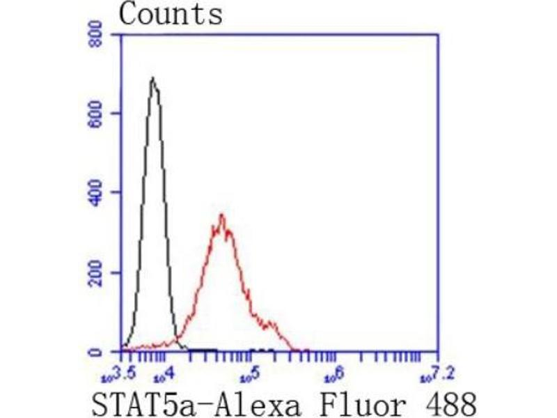 Flow Cytometry (FACS) image for anti-Signal Transducer and Activator of Transcription 5A (STAT5A) (C-Term) antibody (ABIN5947594)