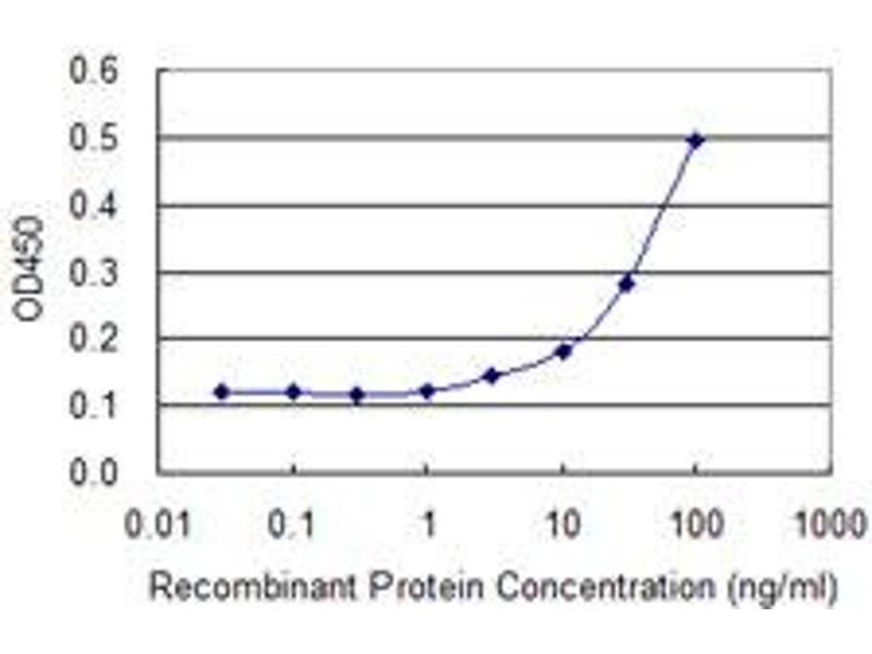 ELISA image for anti-Tumor Protein P53 (TP53) (AA 94-201), (partial) antibody (ABIN521046)