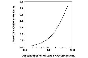 Image no. 1 for Leptin Receptor (LEPR) ELISA Kit (ABIN2684855)