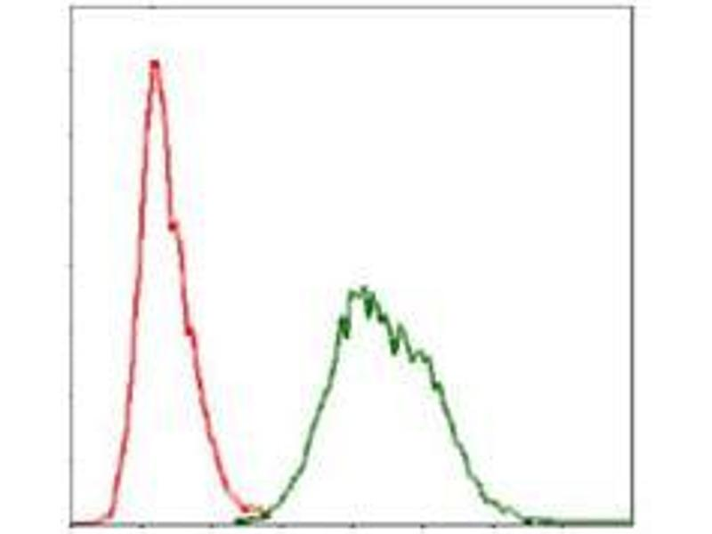 Flow Cytometry (FACS) image for anti-Ubiquitin B antibody (UBB) (ABIN969573)