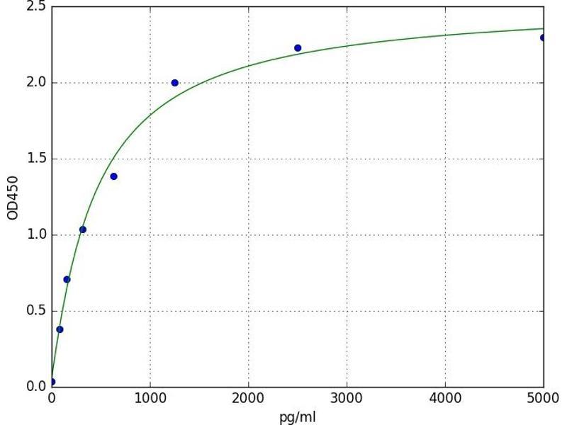 RAS P21 Protein Activator (GTPase Activating Protein) 1 (RASA1) ELISA Kit
