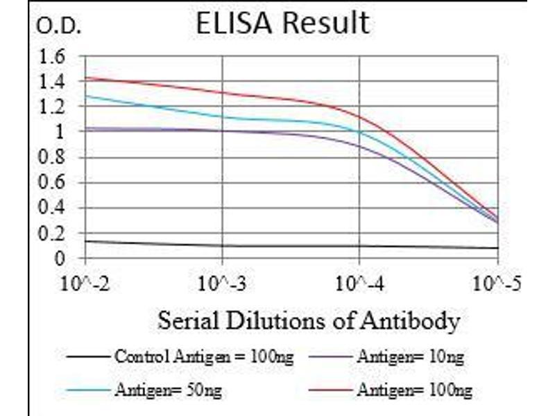 ELISA image for anti-serpin Peptidase Inhibitor, Clade A (Alpha-1 Antiproteinase, Antitrypsin), Member 7 (SERPINA7) (AA 168-302) antibody (ABIN1724894)