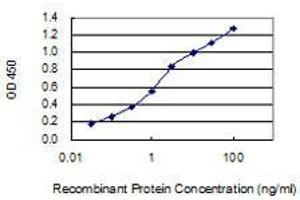 Image no. 1 for anti-Signal Peptide Peptidase-Like 2A (SPPL2A) (AA 31-129) antibody (ABIN2565915)