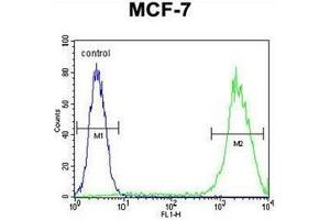 Flow Cytometry (FACS) image for anti-Galectin 3 antibody (Lectin, Galactoside-Binding, Soluble, 3) (C-Term) (ABIN952435)