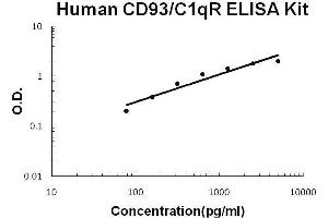 Image no. 1 for CD93 Molecule (CD93) ELISA Kit (ABIN2859214)