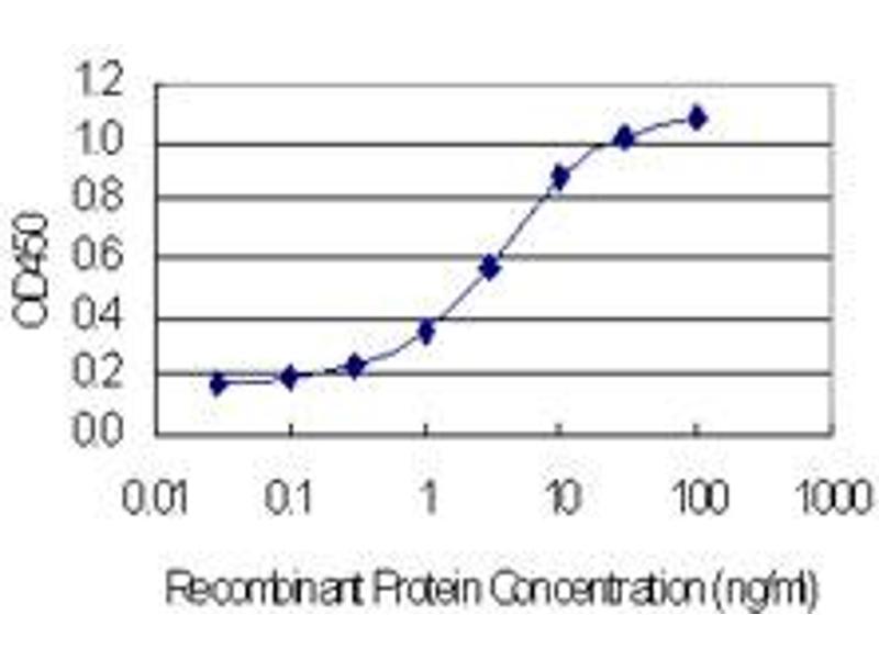 Image no. 2 for anti-NOP10 Ribonucleoprotein Homolog (Yeast) (Nop10) (AA 1-64) antibody (ABIN1327157)