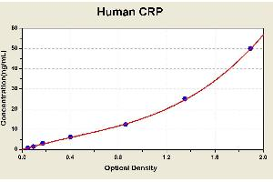 Image no. 1 for C-Reactive Protein (CRP) ELISA Kit (ABIN1113846)