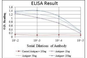 ELISA image for anti-LIM and Senescent Cell Antigen-Like Domains 1 (LIMS1) antibody (ABIN1845734)