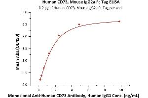 Image no. 1 for 5'-Nucleotidase, Ecto (CD73) (NT5E) (AA 27-549) (Active) protein (mFc Tag) (ABIN7013523)