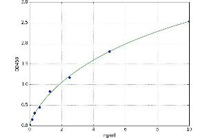 Image no. 1 for Protein Inhibitor of Activated STAT, 1 (PIAS1) ELISA Kit (ABIN5521381)