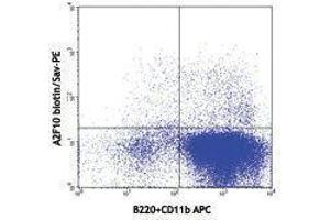 Flow Cytometry (FACS) image for anti-FLT3 antibody (Fms-Related tyrosine Kinase 3)  (Biotin) (ABIN2660812)